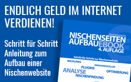 Nischenwebsite aufbauen und Geld verdienen