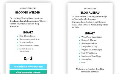 Blog Wings - Kostenloser Einsteigerkurs und 20 Euro Rabatt
