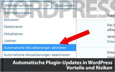 Automatische Plugin-Updates in WordPress - Vorteile und Risiken