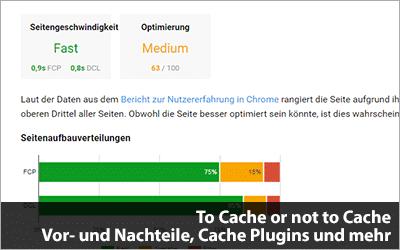 To Cache or not to Cache - Vor- und Nachteile, Cache Plugins und mehr