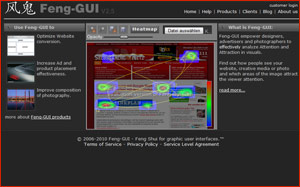 Feng-Gui.com - Eye Tracking - Eyetracking