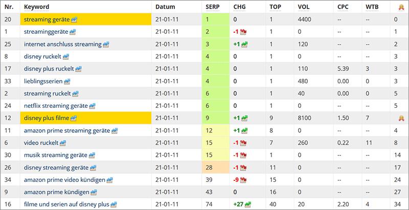 Nischenwebsite-Zwischenstand nach 9 Monaten - Google Rankings