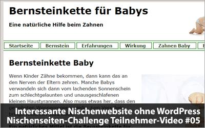 Interessante Nischenwebsite ohne WordPress - Nischenseiten-Challenge Teilnehmer-Video #05