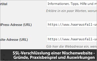 SSL-Verschlüsslung einer Nischenwebsite - Praxisbeispiel und Traffic-Entwicklung