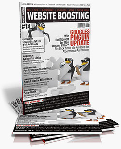 Website Boosting Ausgabe #14 - Review